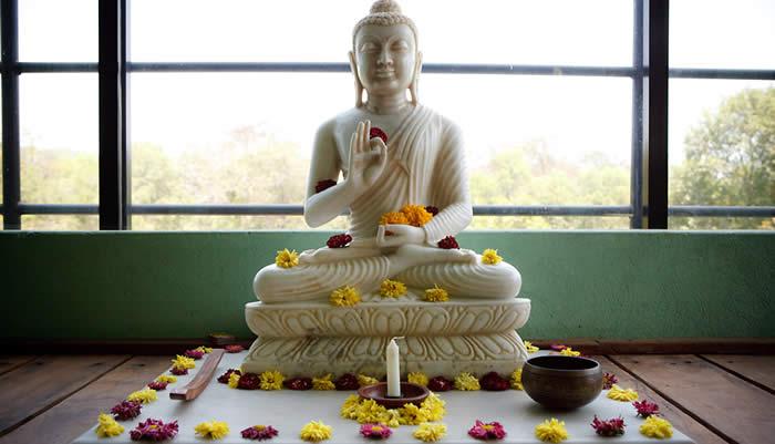 Buddha Shala I
